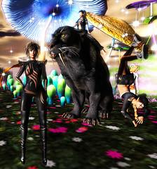 TerraMerhyem_MonsterFeline_02 (TerraMerhyem) Tags: monster monstre horror terramerhyem merhyem ghost fantome halloween terror terreur epouvante peur fear angoisse anxiety anxiete monstruosite cauchemar nightmare alptraum panthère panther