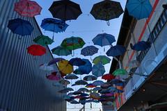 IMG_0242 (meierfoto) Tags: urban stadt schirm colour zürich city