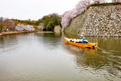 Moat and Boat (moaan) Tags: himeji hyogo japan jp moat boat boatman passengers stonewall sakura cherrytrees cherryblossoms himejicastle canoneos5dsr ef1635mmf4lisusm
