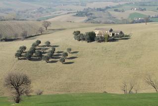 la casa, il pendio, gli alberi - S. Domenico di Corinaldo
