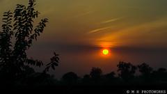 Golden Sunset (Irresistible!) Tags: mhphotoworks mansoorhaq irresistible dawndotcom sunset goldensky lahore sophiafarms beautifullahore beautifulpakistan beautifulevening serenity goldendusk nikon photography landscapes etribune