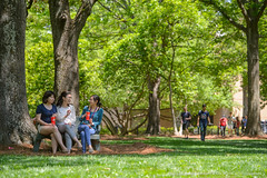 Week in Photos - 27 (Ole Miss - University of Mississippi) Tags: 2017 rkj3038 students diversity grove friends bench talk chat hangout university ms usa