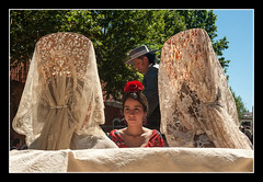 1022 exhibición de enganches en la plaza de toros de la real maestranza de caballería de sevilla (Pepe Gil Paradas.) Tags: exhibición de enganches en la plaza toros real maestranza caballería sevilla andalucia españa