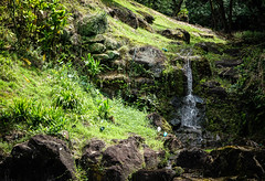 Small fall (kimbar/Thanks for 2.5 million views!) Tags: green hawaii oahu rainforest rocks waterfall