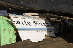 the early bird gets the chop (Mark Rigler UK) Tags: boar early worm rubbish wood junk wreck
