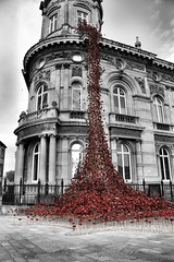 #cityofculture (jamiegill889) Tags: ww2 2017 hull culture blackandwhite red cityofculture