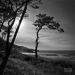 Frejulfe (Jose Antonio. 62) Tags: spain españa asturias frejulfe sea mar silhouette silueta contraluz backlight playa beach navia waves olas bw blancoynegro blackandwhite