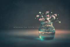 celebrate the little things (RoCafe Off for a while) Tags: edge80 edge80macro lensbaby stilllife flowers gypsophila paniculata blur soft softfocus softlight nikond600