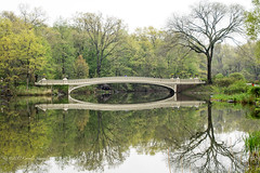 Bow Bridge (CVerwaal) Tags: bowbridge bridges centralpark spring thelake newyork ny usa