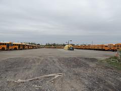 Ridge Road Express (Nedlit983) Tags: school bus ic ce blue bird all american d3 fe vision