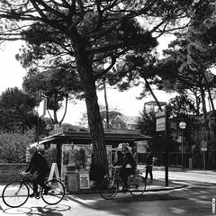 #BIKE2EDICOLA #Marittima Marittima DSCF2602 - quad bike2 bn_resizeA (Viabici(c) di St.Renzi) Tags: viabici bike2 bicicletta bici bike bicycle cykel fahrrad street city mono bw streetphotography blackandwhite italia milano marittima