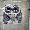 Davey Owlson (LuQuade) Tags: pasteup owl owls putup