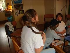 Kinderfeestje thuis met Exotus Serpenti