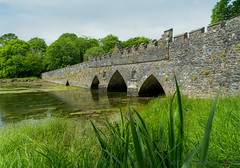 Tintern Bridge. (Tony Brierton) Tags: ireland scenery wexford tinternabbey cowexford wildcamping 30613 saltmills