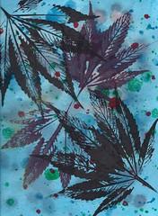 Cannabis Speaks All Languages (Jurassic Blueberries) Tags: bear sunset coastguard art love sunrise comcast army tokyo cub washington oracle pain kyoto hokkaido asahi belize navy cancer arc happiness trains scout nike fu
