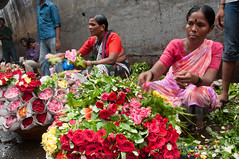 Dadar Flower Market, Piles of Roses - Mumbai, India (uncorneredmarket) Tags: people woman india maharashtra mumbai indianwoman dadarflowermarket mumbaipeople dadarmarket