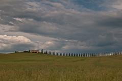 Colline Senesi (FotograTia) Tags: italy field italia country vine hills campagna tuscany siena montalcino toscana brunello vino colline campi senesi