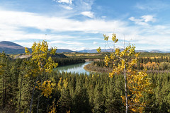 Takhini River Fall (yukonchris) Tags: autumn canada mountains fall nature beauty leaves forest landscape north hike hills trail yukon hillside northern genre taiga borealforest northof60 southernyukon takhiniriver takhinirivervalley canon7d