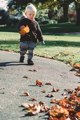 collecting (~jessS~) Tags: autumn light nature leaves toddler natural fallen collecting