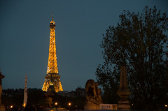 Eiffel Tower by night - Paris