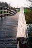 Immer geradeaus (glukorizon) Tags: wood bridge fence horizon nederland delft arrow brug railing hout sloot odc zuidholland pijl reling odc2 ourdailychallenge tanthofkade