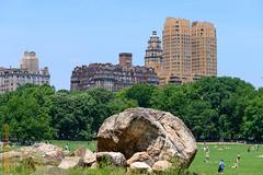New York City (Edi Bhler) Tags: plant building tree grass pflanze lawn structure highrise gras bauwerk baum gebude rasen hochhaus 80400mmf4556 nikond800