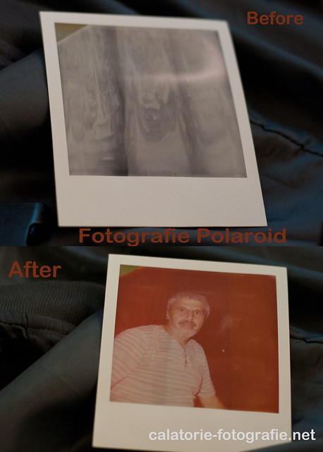 Aparatele Polaroid - generatoare de instantanee în adevăratul sens al cuvântului 11719722733_2aba062508_z