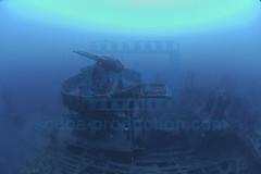 2012 09 DUNE BANANIER DSC_1502