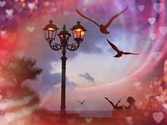 ❤️Love is.. (antonè) Tags: sardegna donna tramonto mare amore gabbiani lampione alghero loveis sanvalentino 14febbraio festadegliinnamorati