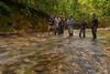 Forest trekking in Malaysia (Paul B Jones) Tags: malaysia terengganu asia forest river trek trekking asian nature wild adventure hike hiking wading water canoneos1dx ef1124mmf4lusm malaisie maleisië 马来西亚 馬來西亞 malasia 말레이시아 マレーシア