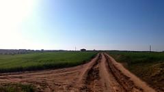 Camino de Ugena (Toledo)  a Illescas (Marquitos8399) Tags: rural primerafoto primavera pueblo fotomovil foto paisaje ugena illescas flickr toledo bicicleta
