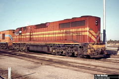 18 January 1981 L262 Forrestfield 1646 (RailWA) Tags: l262 forrestfield railwa philmelling 1981