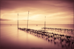 ______\\__\ (Kevin HARWIN) Tags: water sea sand beach long exposure oyster beds canon eos 70d sigma 1020mm lens whitstable kent south east bubble england uk britain