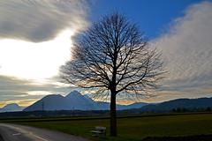 Between Salzburg and the Bavarian border (echumachenco) Tags: sky föhn cloud tree plant road bench hochstaufen zwiesel salzburg loig gois march mountain alps austria österreich nikond3100
