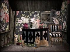 Down the Rabbit Hole (AGodenot) Tags: revival decocrate serenitystyle cheekypea madpea mudhoney junk lisp halfdeer vespertine 8f8 anc hpmd