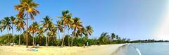 IMG_20170403_165324-01 (Ciscobolo) Tags: wonderfulworld martinique sunset beach paradise palms sea caribbean magiclight ciscophoto clouds eden green treasure