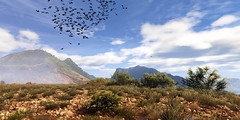 Welcome to Bolivia / Ghost Recon: Wildlands (Den7on) Tags: ghost recon wildland lonely eagle ubisoft bolivia mountain landscape welcome birds