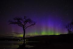 NH3_4751 (NH_Snap) Tags: aurora lochleven milarrochybay night