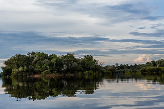 Juma River - Amazon