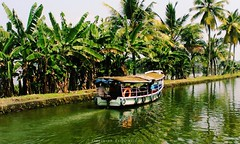 God's Own Country (Shrayansh Faria Photography) Tags: waters backwaters lush green trees plantation sky
