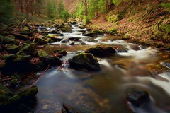 Cold mountain water (Pavel Cervenka Photographer) Tags: creek rivulet water forest jeseníky spring rocks rush nature colorful pavel cervenka czech republic olympus 1240f28