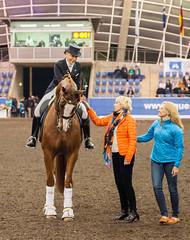 17429_Sydney_CDI_GPFS_Pres_6993.jpg (FranzVenhaus) Tags: athletes dressage australia equestrian riders horses ponies rug siec nsw sydney newsouthwales aus