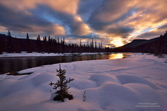 Morning Solo (Mengzhonghua) Tags: canadianrockies winter sunrise river