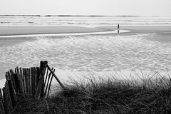 La vie devant soi (cactus2016) Tags: noiretblanc blackandwhite mer sea walking absoluteblackandwhite