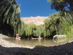 Valle Del Elqui (noramgood_) Tags: valle del elqui pisco río derecho river chile la serena coquimbo región cielo naturaleza libre free viento arboles sauces verano