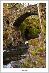 Bridge Over River Braan (flatfoot471) Tags: 2016 bridge dunkeld holiday landscape normal perthkinross perthshire riverbraan scotland spring thehermitage unitedkingdom gbr