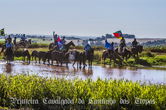 Cavalgada (Venicius Follmann de Oliveira) Tags: riograndedosul matoqueimado veniciusfollmanndeoliveira industriadeimagens caibaté missões cavalocrioulo cavalgada mulas tropa de mulada gaucho