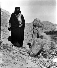 statue colossale à l'entrée de NT1 (Patrimoine du Proche-Orient) Tags: nimrud kalhu