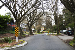 Wow, this amazing and wonderful street leading to the zoo. (Seattle Department of Transportation) Tags: seattle sdot transportation donghochang twitter residential street trees calming chicanes zoo pretty canopy curvy