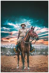 The Horseman (deba nayak) Tags: teal orange horse beach ngc chennai marinabeach india police calm